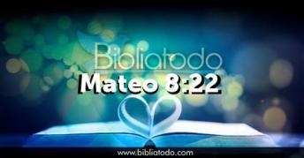 mateo-8-22